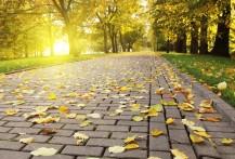 Тротуарная бетонная брусчатка